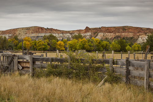 DakotaCattleCountry-TMiller-2