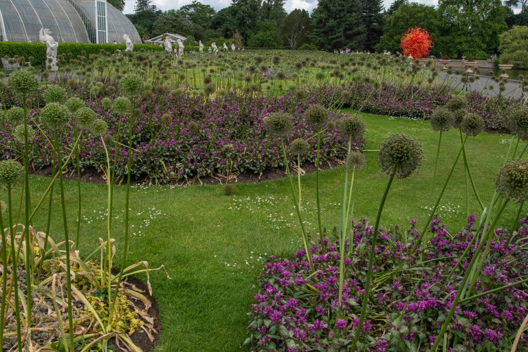 Kew Gardens-9549