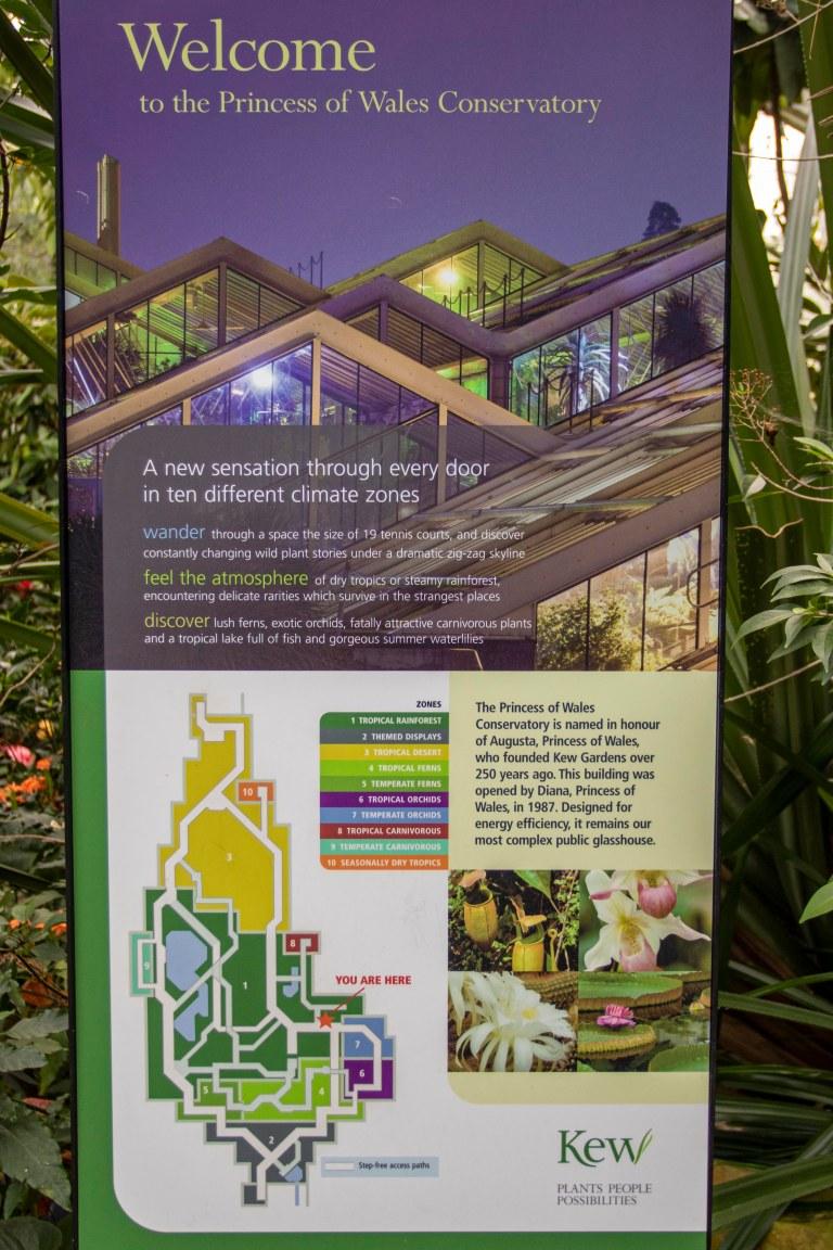 Kew Gardens-9730