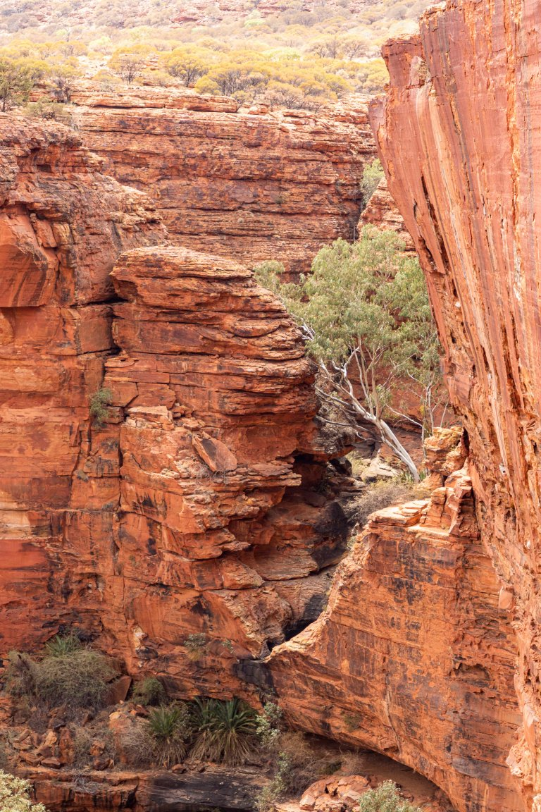 Kings Canyon-6116