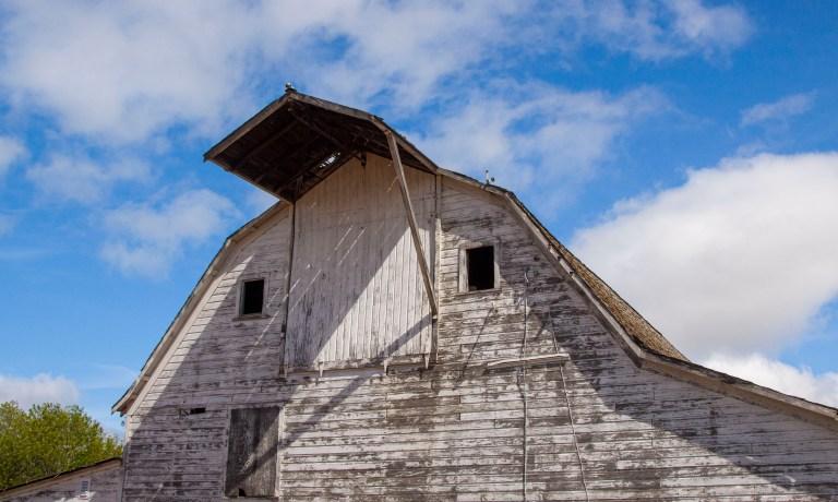 The Barn-2848
