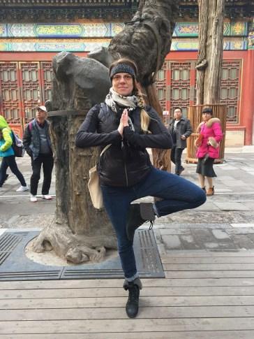 Yoga Pose dedicated to the 500yo tree.