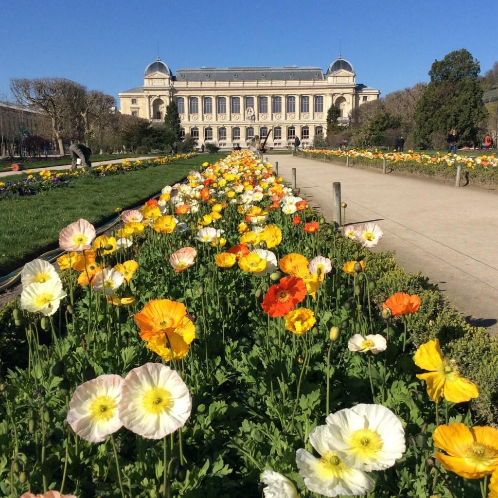 Jardin des Plantes, Paris; from a travel blog by www.traveljunkiegirl.com