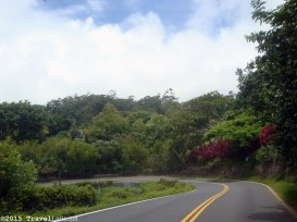 Just one of the 620 curves and turns on the Road to Hana. This is an easy one. They are not all like this.
