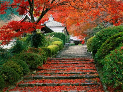 Photo: Daigo-ji Temple Gardens Kyoto