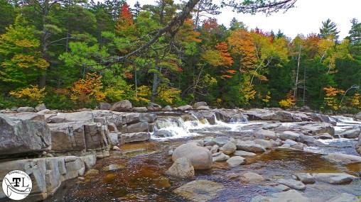 Kancamagus Hwy - Lower Falls Scenic Area (4)