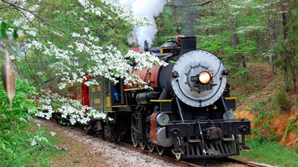 Spring Festivals in Texas - Dogwood Festival - Piney Woods Train