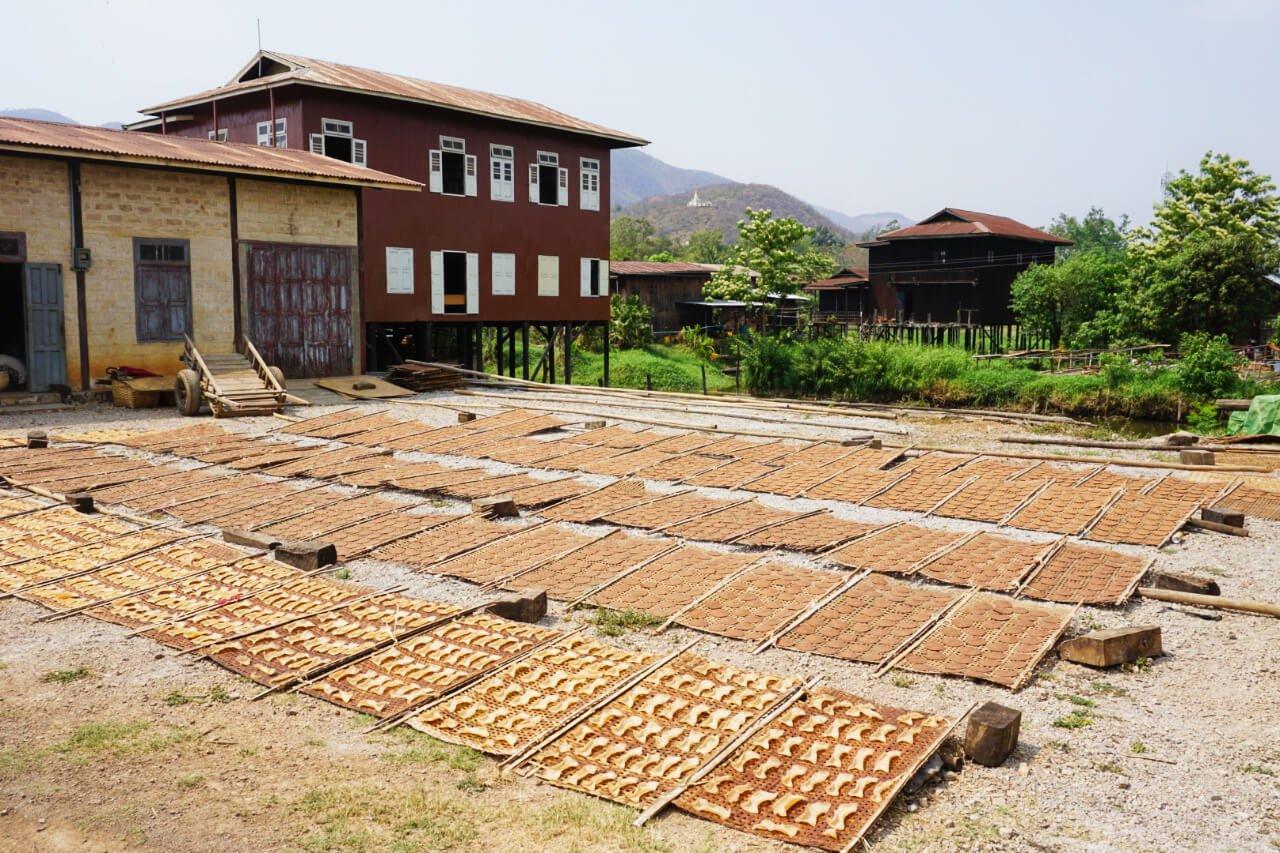 Myanmar photos tofu drying on Lake Inle town