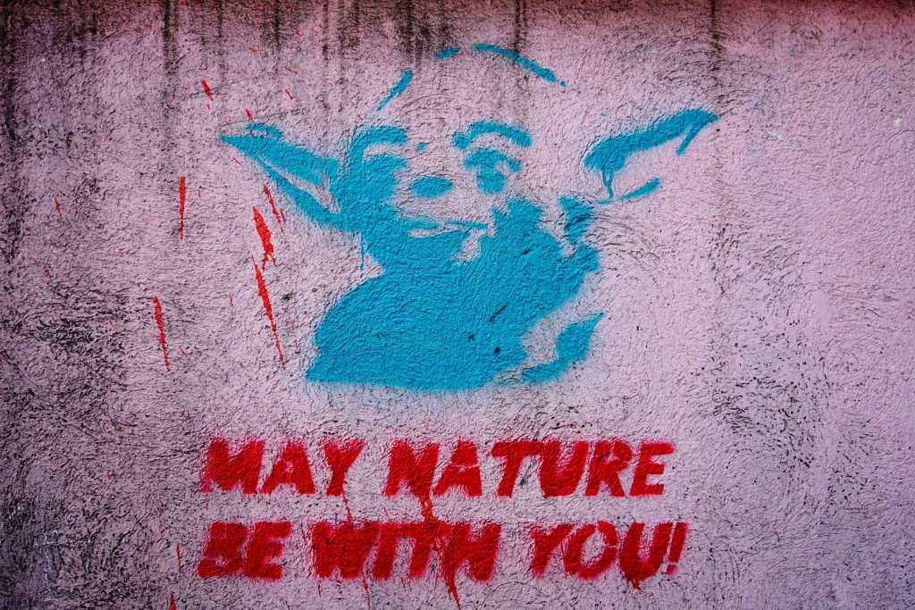 Belgrade Street Art: Yoda May Nature Be With You