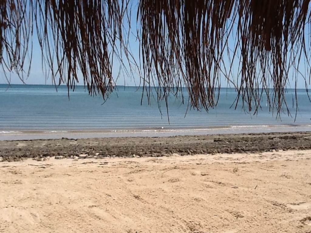 Best Emerging Destinations: Mozambique