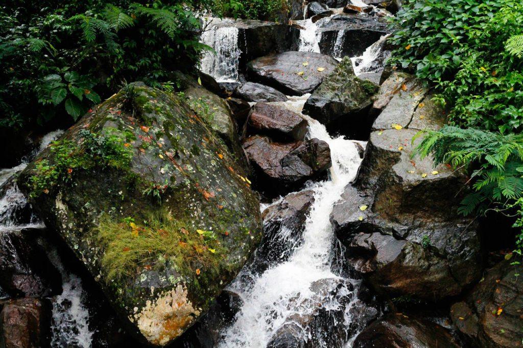 Emerging Travel Destinations: Nuwara Eliya Sri Lanka
