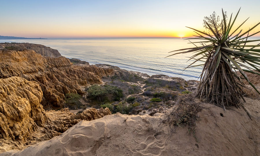 View of the sunset in Torrey Pines