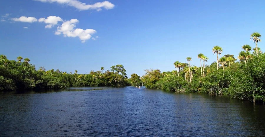 View of the Loxahatchee River