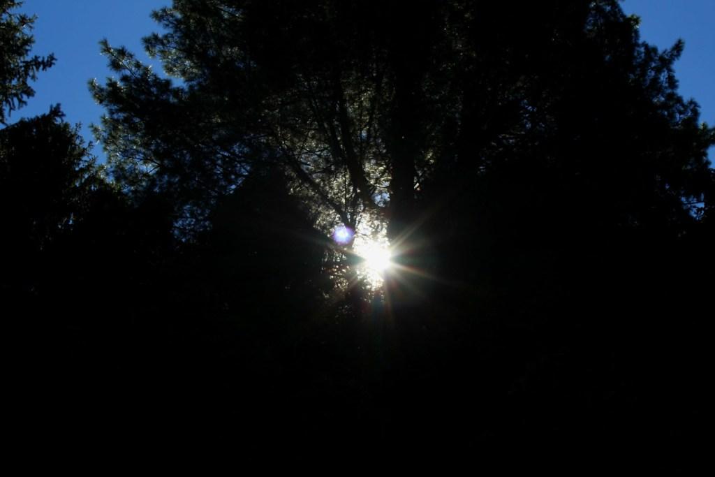light-in-the-darkness-traveller-priyo