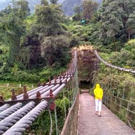 Siror_bridge_Netala