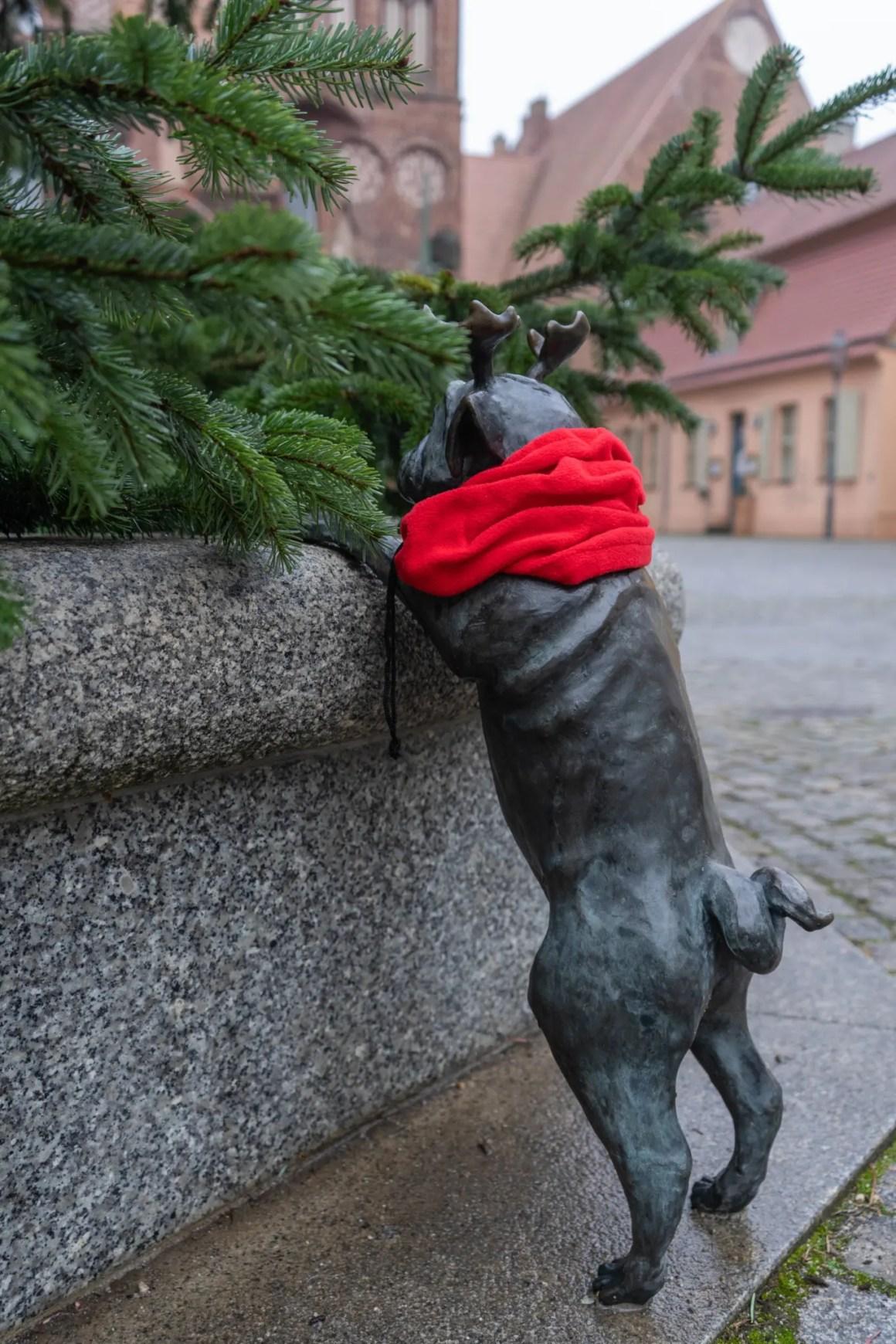 Bosmopsen in Brandenburg an der Havel