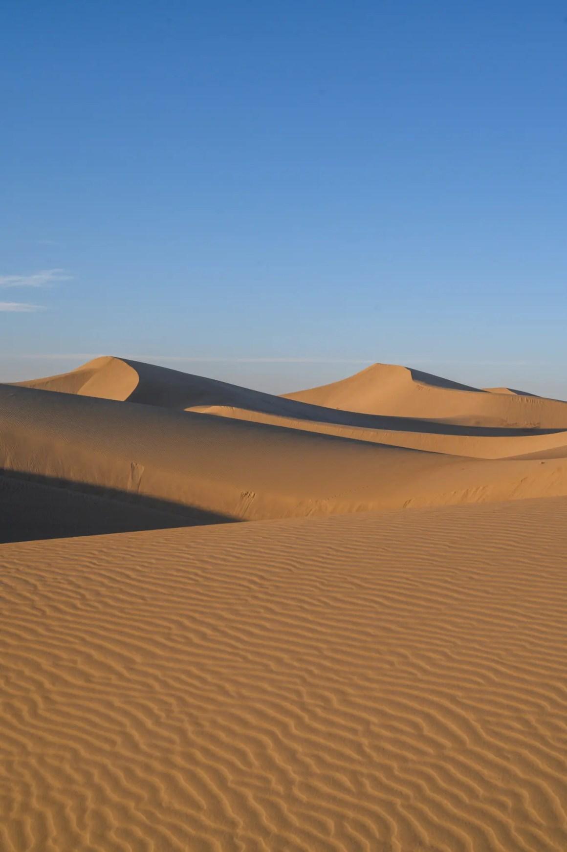 Duinen in de woestijn