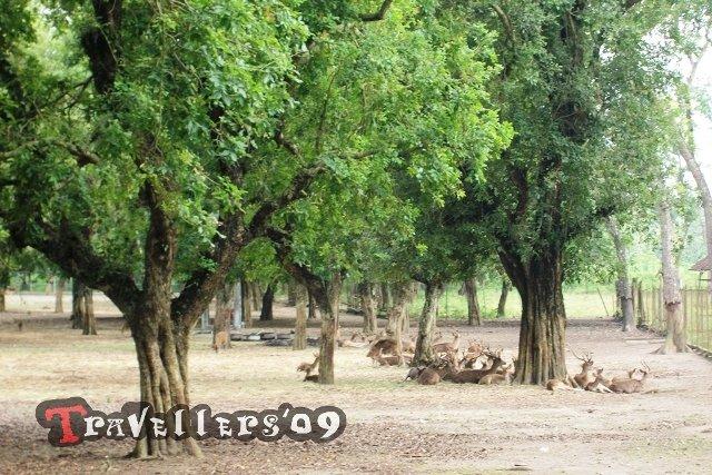 150 Tempat Wisata Di Blitar Halaman 3 Dari 7 D Travellers