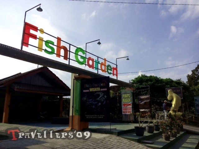 fish-garden