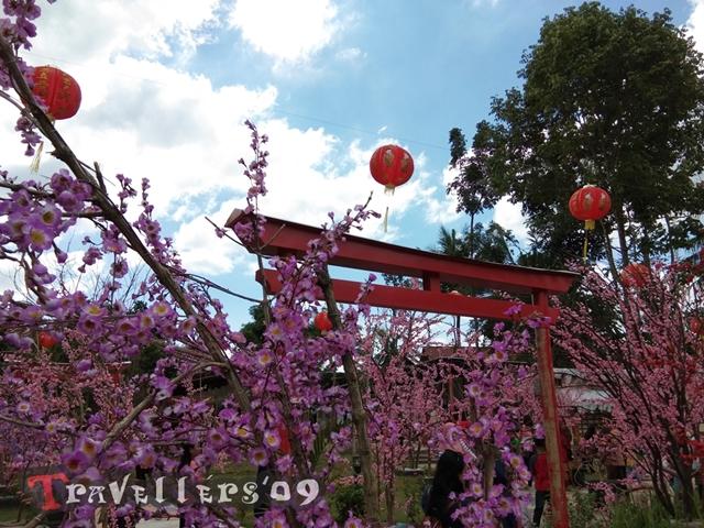 Istana Sakura Blitar 22