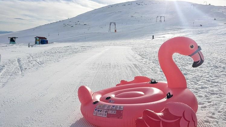 1500 Km ➡️ 3 Χιονοδρομικά Κέντρα & 1 μπουγάτσα!