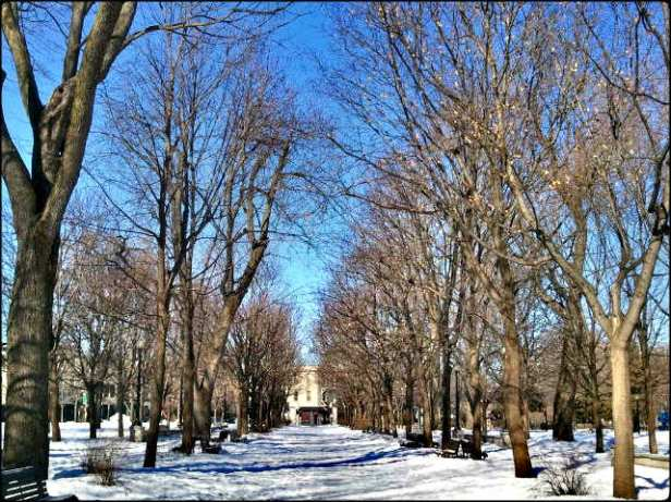 Parc Lafontaine, Lafontaine Parc, Montreal, Winter, outdoor, snow