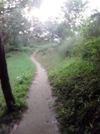 Jansooh -Village Travel Pathway Pics11