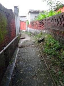 Sunsets and Street Inside-Jansooh -Village Travel Pathway Pics3