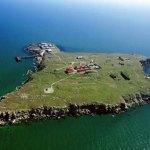 Подводные тайны Змеиного острова — интересный дайвинг