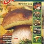 Что нужно знать о грибах – полезные ссылки + определители грибов