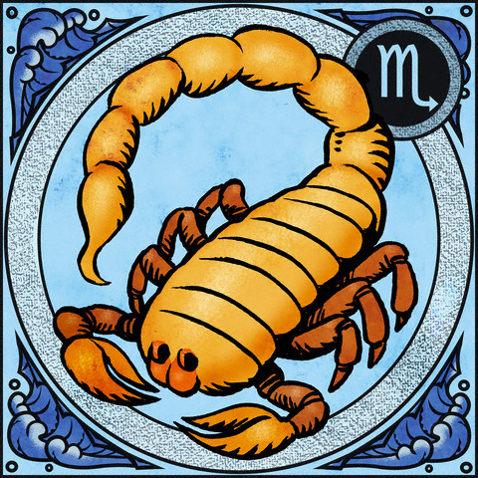 скорпион на отдыхе