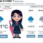 Грибному сезону в Киеве мешают сильные дожди