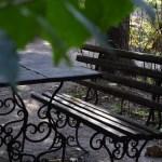 Сырецкий дендропарк в Киеве – один из лучших парков для наслаждения природой