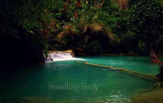 Wandering To: Kuang Si Waterfall, Laos