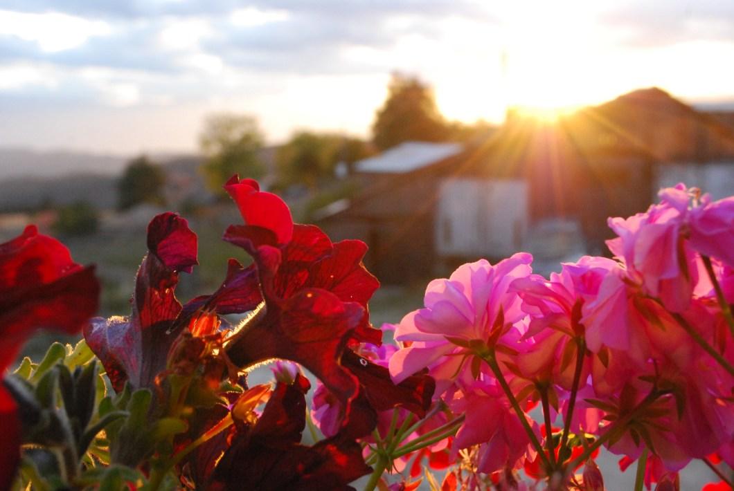 sunset-ortsevo-rhodopes