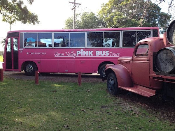 Pink Bus Swan Valley Tour