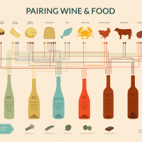 Wine and Food Pairing Infographic Wine Folly