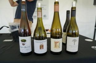 Full Bottle Wine Appreciation at UnWined WA 2014