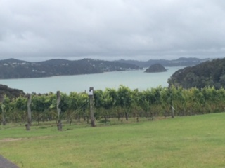 Omata Estate - Russell New Zealand