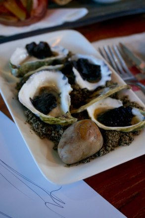 Albany Rock Oysters - Long Lunch at Garrison Albany