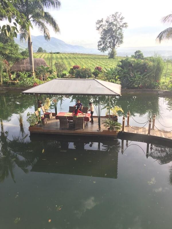 Dinner - Monte di Vino Lodge - Aythaya Vineyard