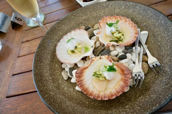 Scallop Tartare with cucumber at Frogmore Creek Vineyard restaurant - Tasmania