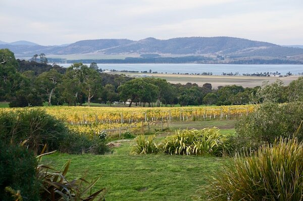 View from Coal Valley Vineyard - Tasmania