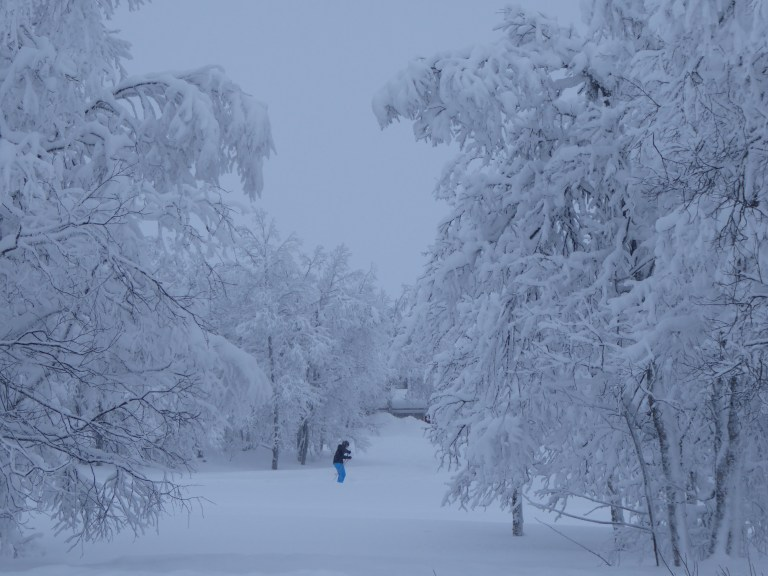 norway ski