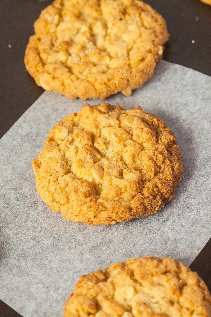sugar free anzac biscuit