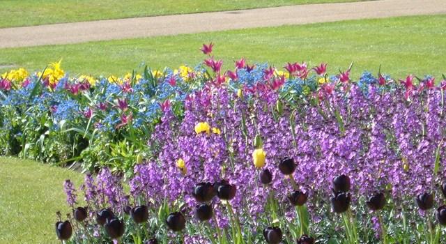 Recomendaciones para ver Londres en Primavera