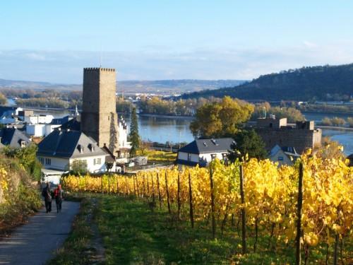 Oficina de Turismo de Francfort y Oficina de Turismo de Rüdesheim