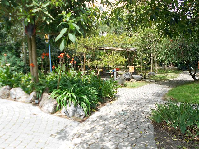 sendero jardín botánico Quito