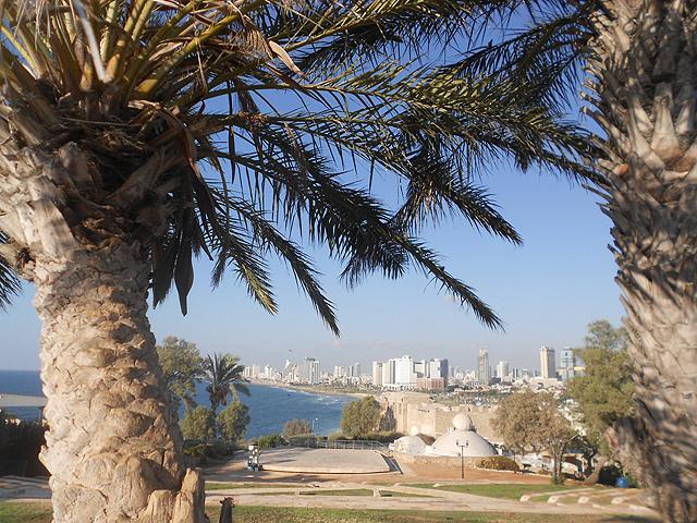 israel-10-dias-3-1-640
