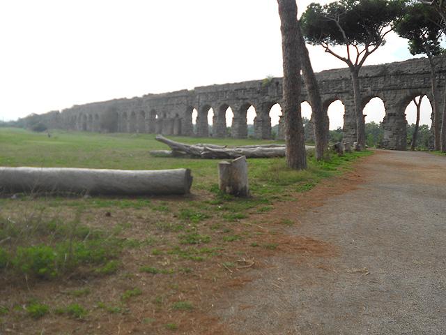 Parque de los Acueductos, Subaugsta